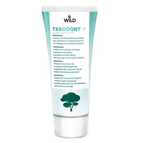 ЗУБНАЯ ПАСТА Tebodont-F, 75мл - фото 1 | Сеть аптек Viridis